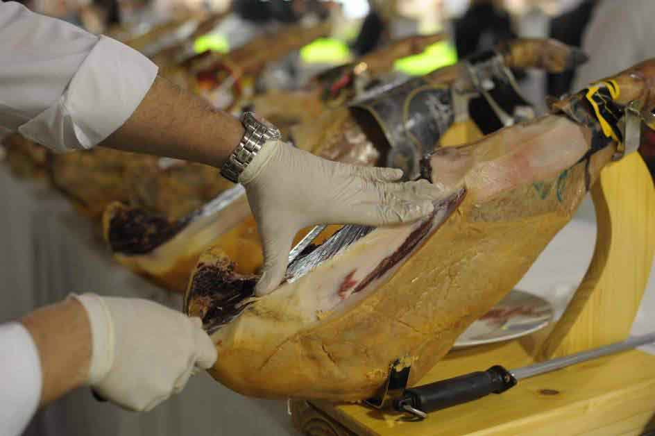 cortadores profesionales en Biosca Lleida