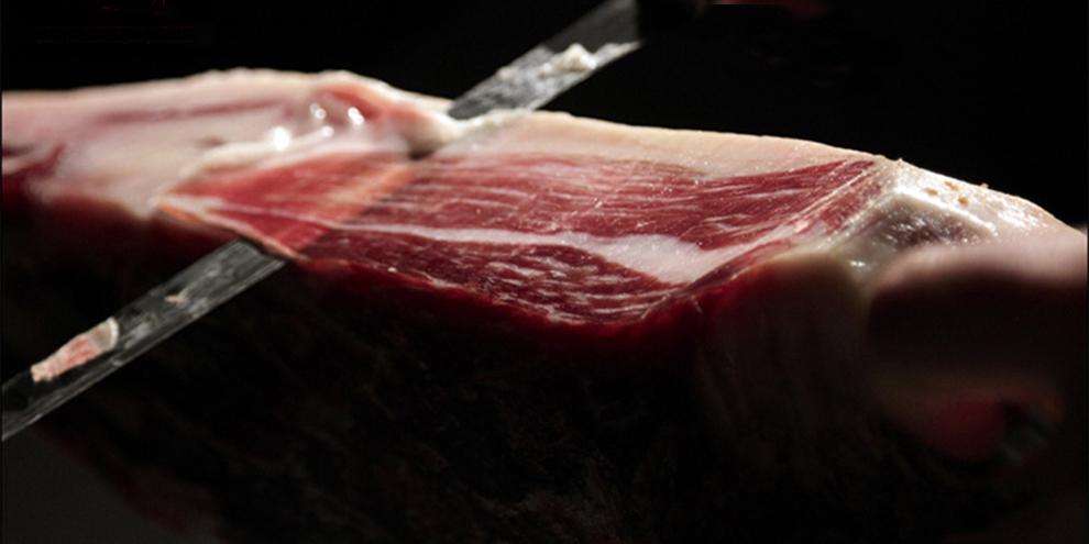 cortadores profesionales en Els Torms Lleida