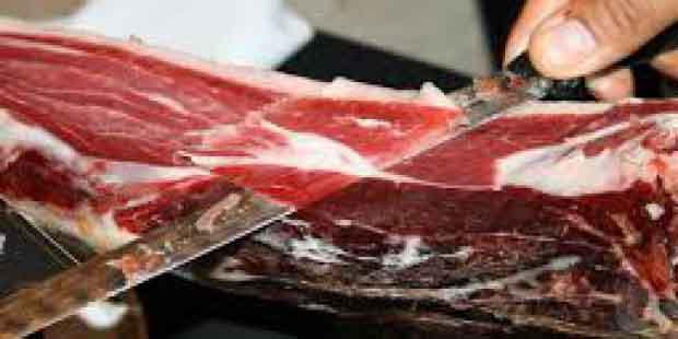 cortadores profesionales en Les Oluges Lleida