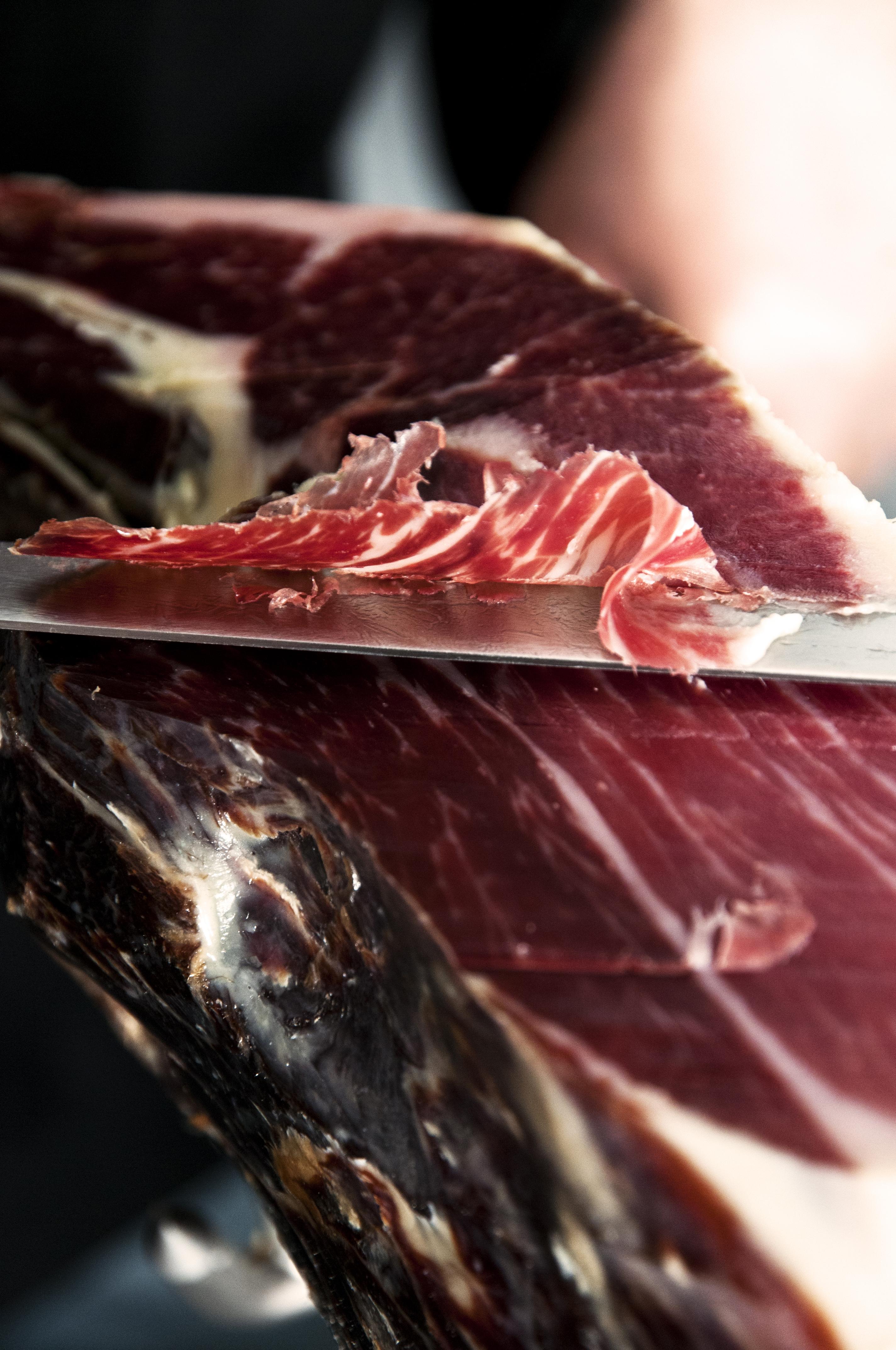 cortadores profesionales en Cervera Lleida