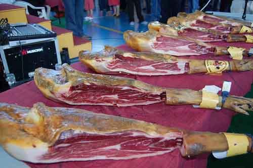 cortadores profesionales en Ivorra Lleida